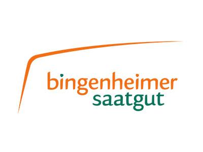 BSAG-Logo-Bogen-rz_klein